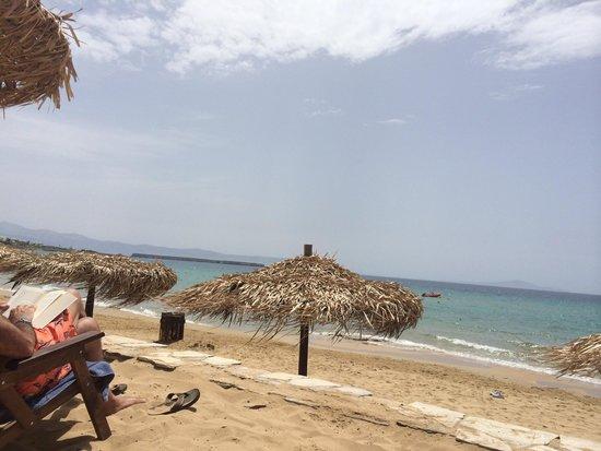 Paros Agnanti Resort: Golden beach