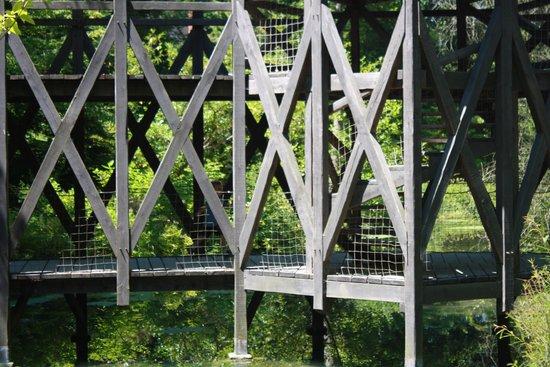 Le Chateau du Clos Luce - Parc Leonardo da Vinci: Bridge in the DaVinci Garden