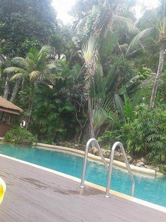 Centara Villas Phuket: bottom pool