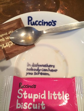 Puccino's: In the dishwasher ..... Love the humour of this place it's even on their saucers!