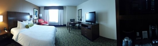 Hilton Garden Inn Orlando at SeaWorld: Pano of the room