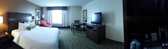 Hilton Garden Inn Orlando at SeaWorld : Pano of the room