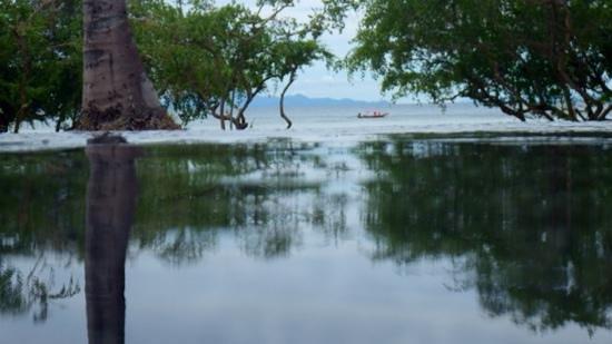 Haadtien Beach Resort: Haad Tien - from the pool