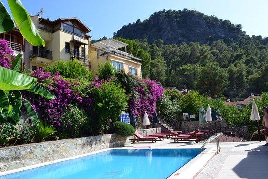 Villa Daffodil: Otelin havuzu