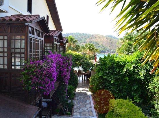 Villa Daffodil: Otelin bahçesi