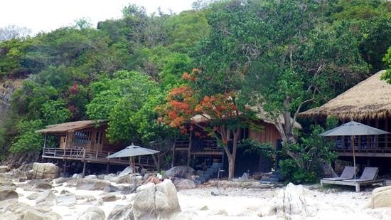 Haadtien Beach Resort : Haad Tien cottages on the beach