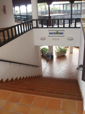 Isla Paraiso: Steps to reception