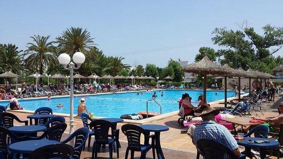 FERGUS Style Pollensa Park SPA: the pool