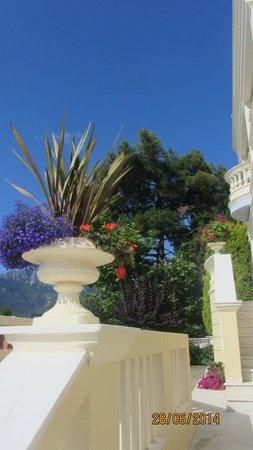 Enavlion Hotel Batagianni : flowers