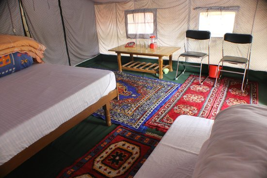 Apple Orchard Farm and Camping: Tent