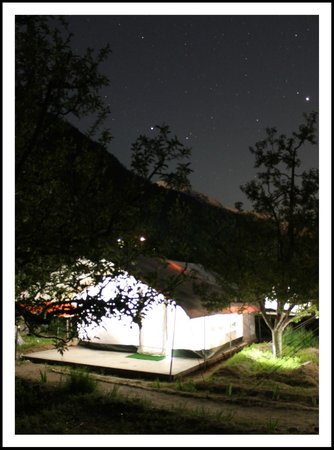 Apple Orchard Farm and Camping: Tent at night