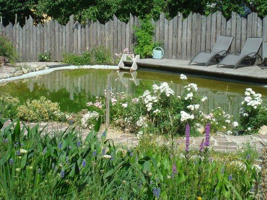 Vignoble Klur: Natuurlijk zwembad in de tuin