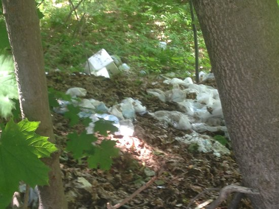 Days Inn Kittery: Trash belongs in Dumpster not on the property