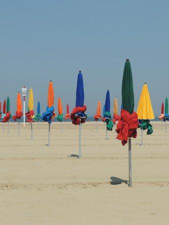 célèbres parasols   Picture of Deauville Beach, Deauville