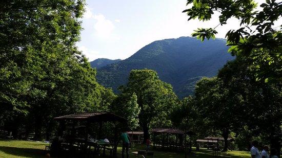 Parco Cerrus