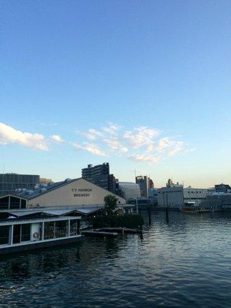 T.Y.Harbor: 最後の橋を渡って店に着く前。川沿い気持ちいい。