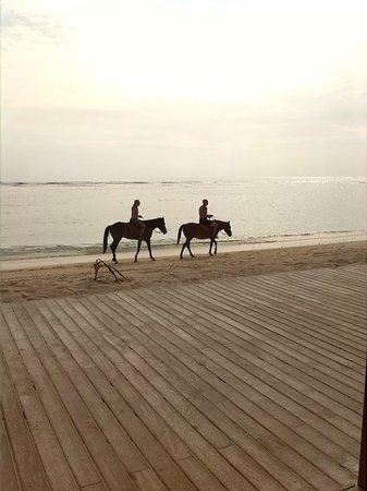Aston Sunset Beach Resort : Horse riding from the closed stable, at sunset.