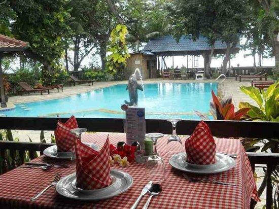 Bali Lovina Beach Cottages: swimming pool