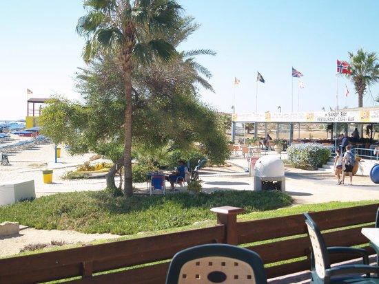 Pavlo Napa Beach Hotel: hotel grounds