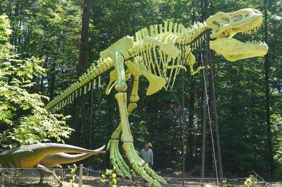 Styrassic Park: A világ legnagyobb T Rex csontváz modellje