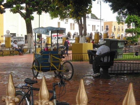 Plaza e Parque Francisco Canton: Fresh drinks from a cart!