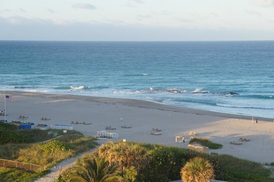 Hilton Singer Island Oceanfront/Palm Beaches Resort: Praia