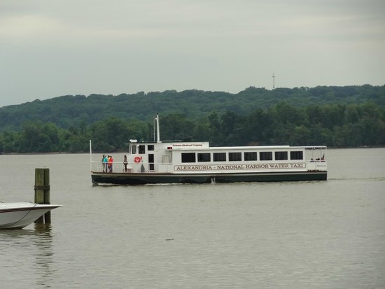 Old Town Waterfront: Water taxi on the Potomac River at Old Town!