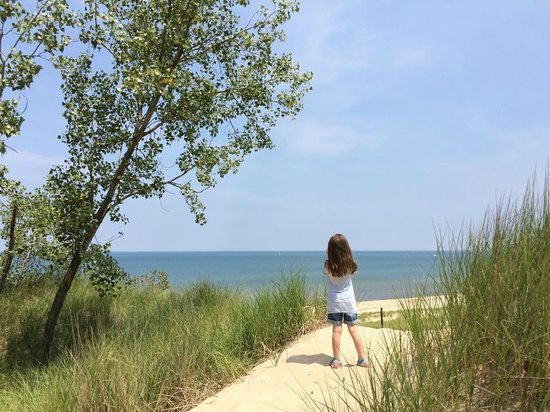 Indiana Dunes State Park: Enjoying the view of the lake from one of the surrounding hills