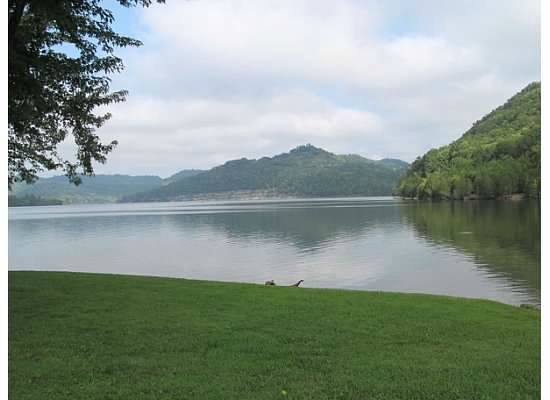 Defeated Creek Marina & Resort: lake view from site