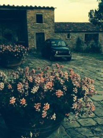 Agriturismo Il Poggio alle Ville: Around the house we stayed in