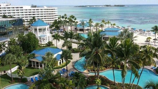 Melia Nassau Beach - All Inclusive: Bahama Life