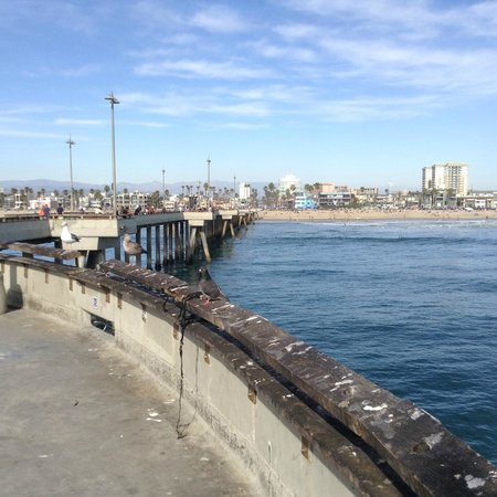 Venice Fishing Pier : Vista de Venice Beach