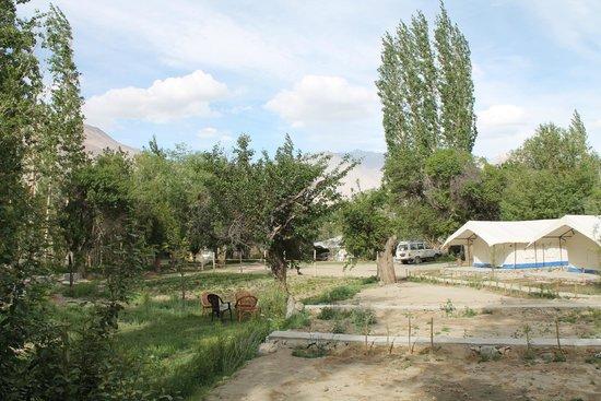 Apple Nubra Cottage: outside