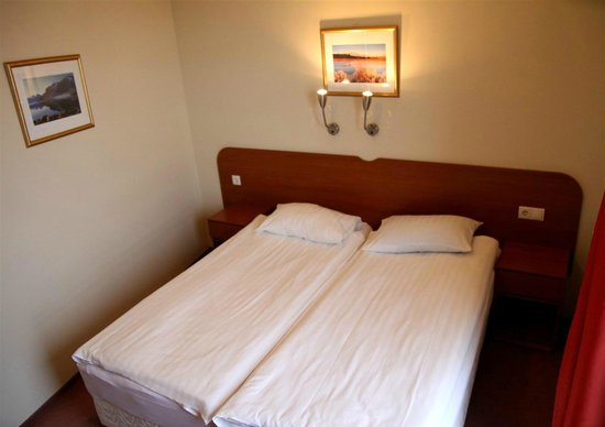 Fosshotel Baron: Standar Double Room