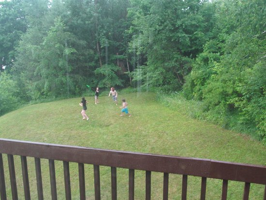 Mountain View Inn: view of side yard from deck