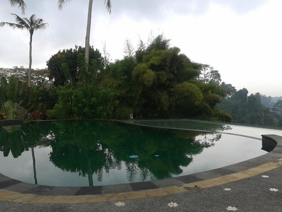 Tanah Merah Art Resort : Nice pool
