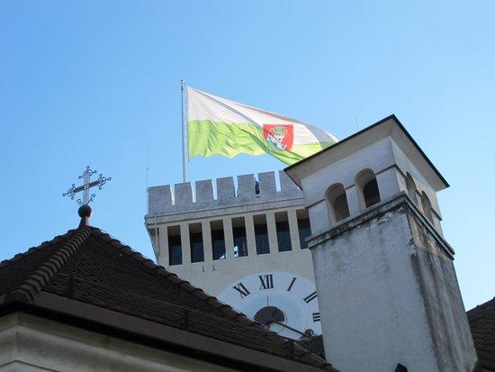 Ljubljana Castle: flag on the tower
