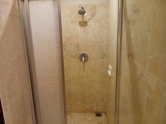 Hotel Bidakara Grand Savoy Homann Bandung: Shower