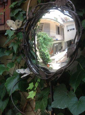 UnE VuE SuR CouR : Miroir de jardin