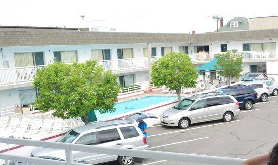 Impala Island Inn: Impala