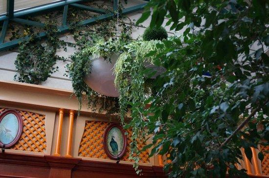 Le Saint-Amour : Garden room