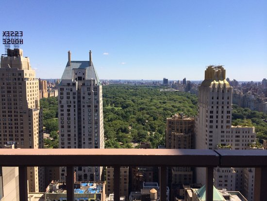 Parker New York: View from the pool