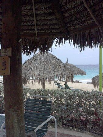 Aruba Beach Club: View of beach/ocean from pool area
