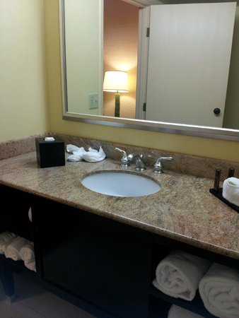 Embassy Suites by Hilton Miami - International Airport: Bathroom