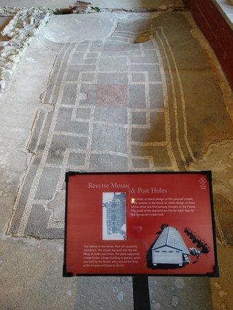 Fishbourne Roman Palace: Mosaics