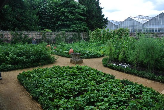 Royal Botanic Gardens Kew: The Kitchen Gardens at Kew