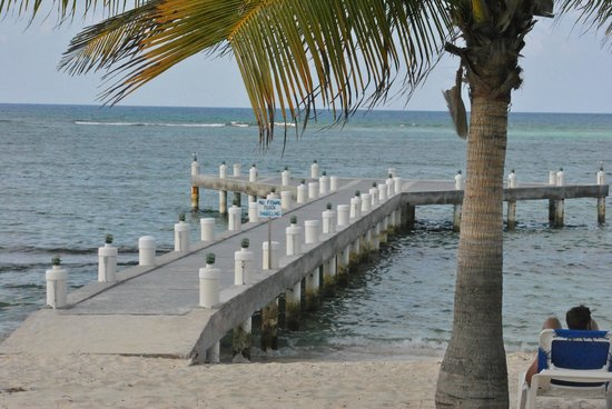 Wyndham Reef Resort : You can snorkle and see fish off the dock.