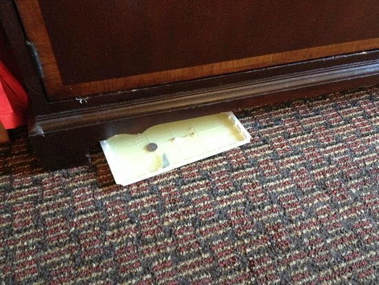 Holiday Inn Washington DC-Central/White House: What is this? it was under the furniture all four days..