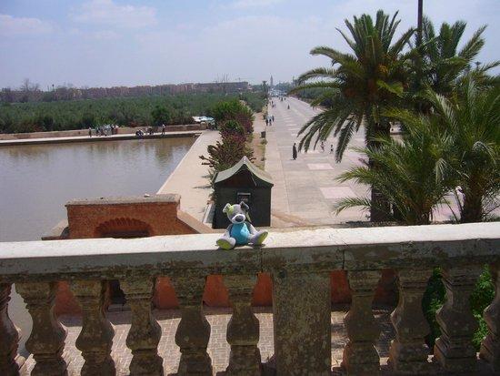 Menara Gardens and Pavilion : VISTA DESDE EL PABELLON