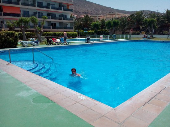 Comodoro Apartments: view of the pool